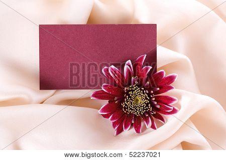 Chrysanthemum Form On Silk