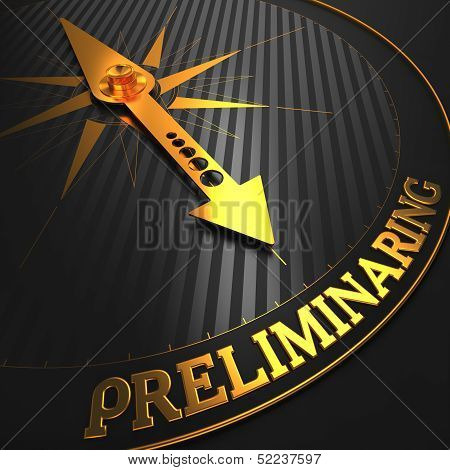 Preliminaring. Business Concept.