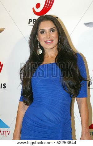 HOLLYWOOD - Saye Yabandeh arrives at the 2013 Philhellenes Gala benefiting Praksis at the SkyBar on October 9, 2013 at the Mondrian Los Angeles, West Hollywood, CA.
