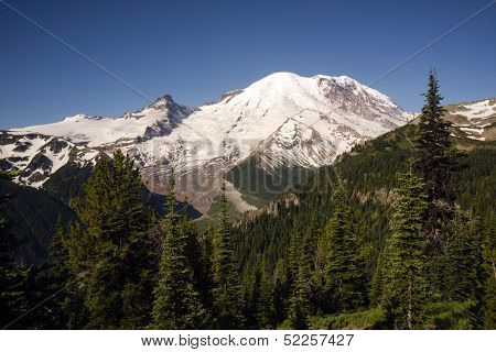 Trail High On Burroughs Mountain Cascade Range Mt. Rainier Background