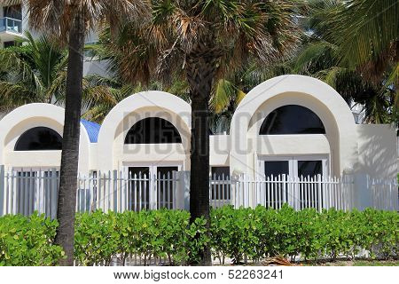 Palm trees and three windows