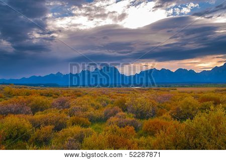 Grand Tetons Lanscape