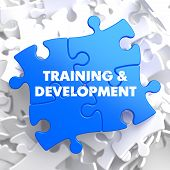 stock photo of mentoring  - Training and Development Written on Blue Puzzle Pieces - JPG