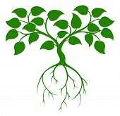 picture of root-crops  - An illustration of a green tree graphic with long roots - JPG