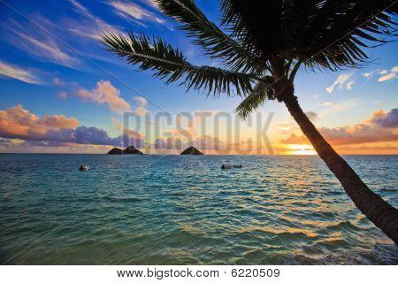 sunrise Pacífico en Hawai lanikai