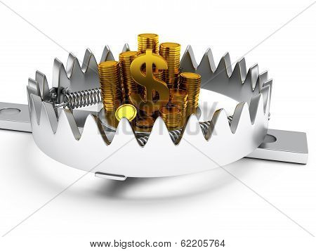 Metal animal trap open with money