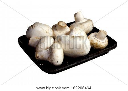 Seven White Button Mushrooms On Black Punnet