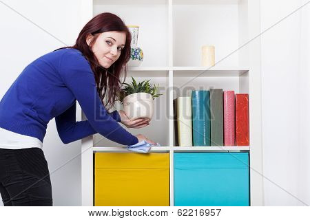 Young Woman During Dusting
