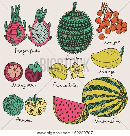 Bright tropical fruit set in vector. Dragon fruit, durian, longan, mangosteen, carambola, mango, annona and watermelon. Cute cartoon vector card in vintage style