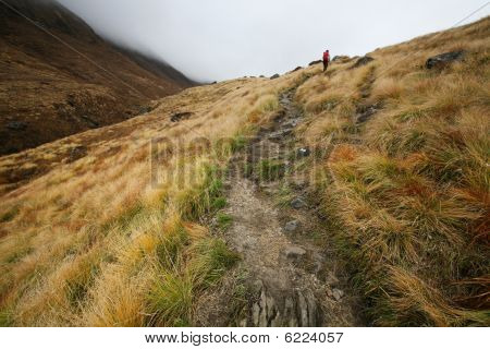 Hiking trail to  annapurna