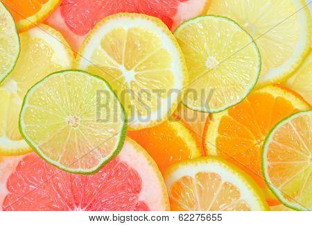 fresh Sliced citrus fruits background