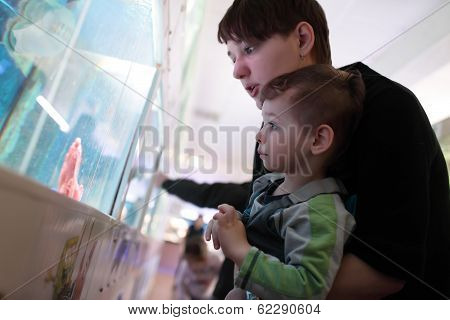 Mom Tells Her Son About Fish