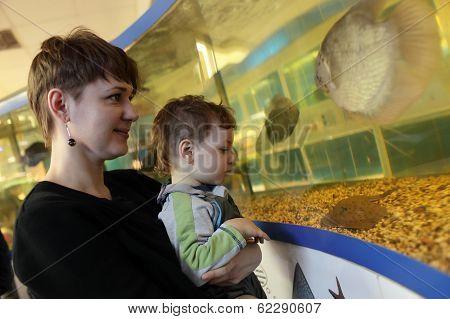 Mom With Son At Oceanarium