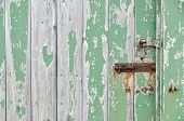 picture of hasp  - Weathered wooden door peeling green paint with rusty bolt and lock - JPG