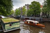 picture of houseboats  - Traditional houseboats in a canal of Amsterdam - JPG