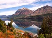 stock photo of negro  - Autumn Colors in Lake Gutierrez near Bariloche Patagonia Argentina - JPG