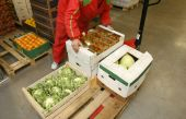 image of factory-worker  - interior of storage of fruit and vegetable packages - JPG