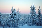 stock photo of laplander  - beautiful Lapland winter forest - JPG