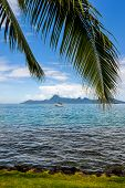 Island Of Moorea.french Polynesia