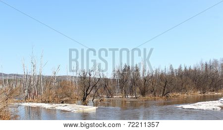 River Barga after opening in Zelenogorsk Krasnoyarsk Territory