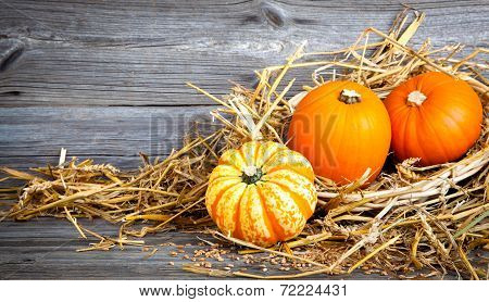 Autumn Pumpkins On Wooden Board, Straw