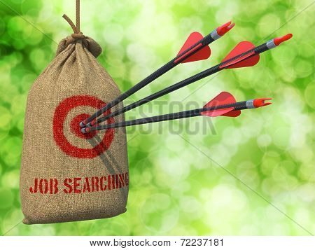 Job Searching - Arrows Hit in Red Mark Target.