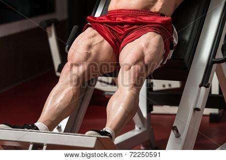 Amazing Legs
