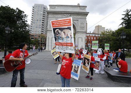 PACK members enter Washington Square