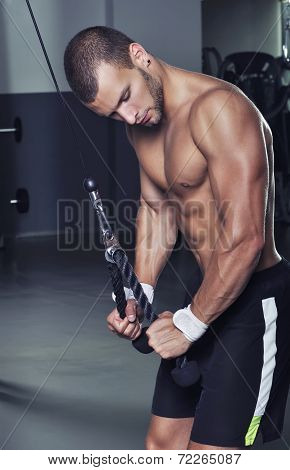 Handsome Muscular Male Model With Perfect Body Doing Triceps Exercise