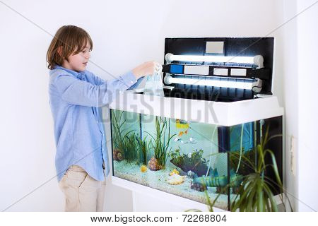 Child Putting New Fish In An Aquarium