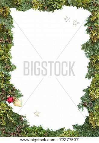 Christmas Frame Of Natural Thuja And Jew Twigs
