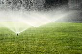 foto of sprinkler  - garden sprinkler on a sunny summer day during watering the green lawn - JPG
