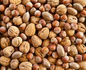 stock photo of pecan  - Varitey of nuts like walnuts pecans and hazelnuts - JPG