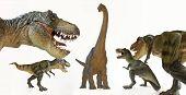 stock photo of tyrannosaurus  - A Tyrannosaurus Rex Pack Surrounds a Brachiosaurus on White - JPG