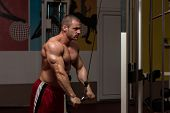 picture of light weight  - Young Bodybuilder Doing Heavy Weight Exercise For Triceps - JPG