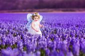picture of magic-wand  - Portrait of an adorable toddler girl in a magic fairy costume and flower crown in her curly hair playing with a wand in a beautiful field of purple hyacinths in Keukenhof Holland on windy spring day - JPG