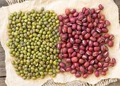 image of mung beans  - Azuki beans and mung beans on paper - JPG