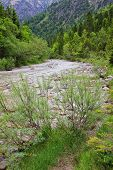 pic of bavarian alps  - cold mountain creek in the wilderness bavarian alps - JPG