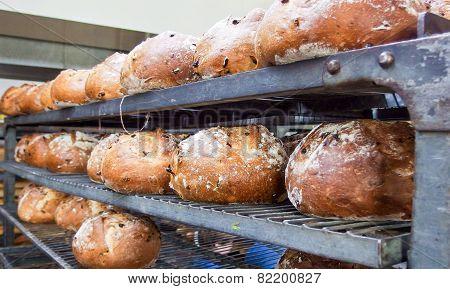 Bread On Shelves