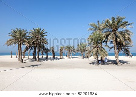 Beach In Umm Al Quwain