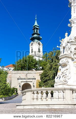 the plague column and castle in Nitra, Slovakia