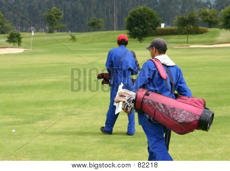 Caddies