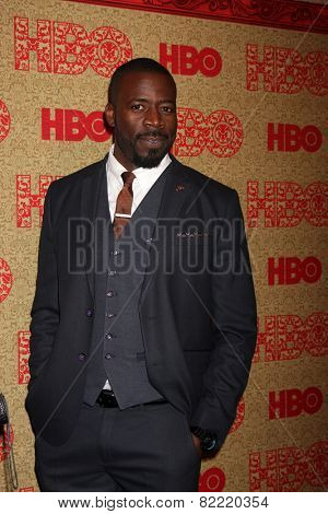 LOS ANGELES - JAN 12:  Demetrius Grosse at the HBO 2014 Golden Globe Party  at Beverly Hilton Hotel on January 12, 2014 in Beverly Hills, CA