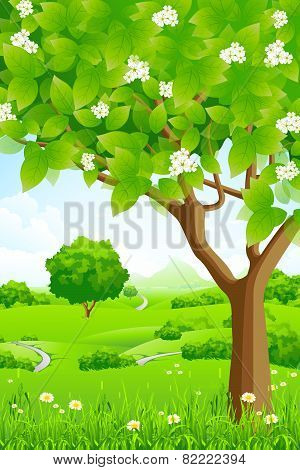 Green Background With Trees And Mountains