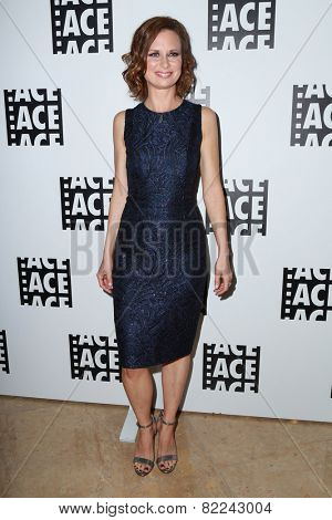 LOS ANGELES - JAN 30:  Mary Lynn Rajskub at the 65th Annual ACE Eddie Awards at a Beverly Hilton Hotel on January 30, 2015 in Beverly Hills, CA