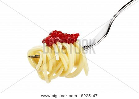 pasta with red sauce on a fork
