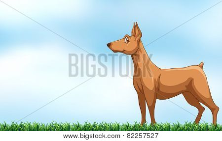 Illustration of a dog standing in the field