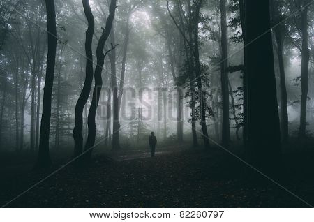 Silhouette of man in dark scary forest with fog on Halloween night