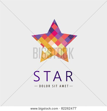 vector star logo, icon isolated, identity