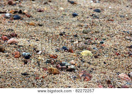Wet Sand Macro